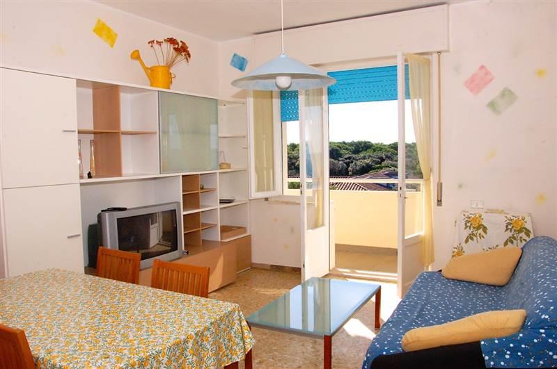 San Vincenzo (LI) - Quadrilocale 7 posti letto - fronte mare - 150 metri dal centro