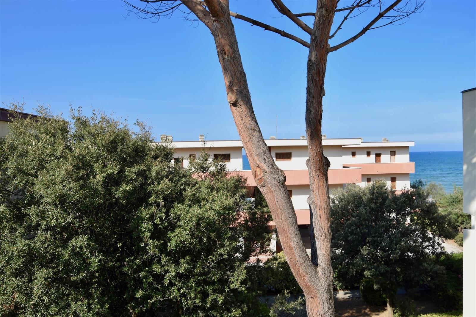 San Vincenzo (LI) - Splendida posizione, ampio trilocale  a 10 metri dalla spiaggia.