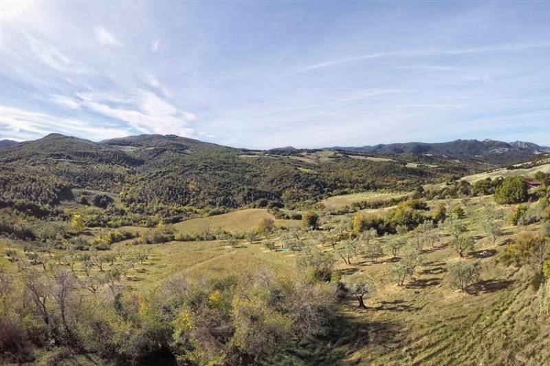 Pomarance - Casolare con terreno