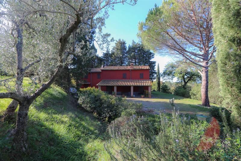 Toskana - Casale Marittimo, Steinhaus mit Park
